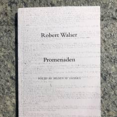 Walsers kloka galenskap